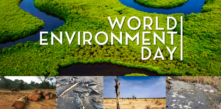 World Environment Day #ProtectTheGambia
